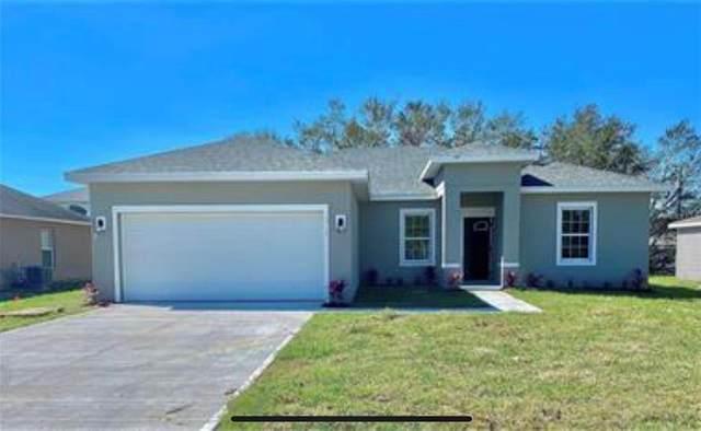 7804 Zamora Avenue, Sebring, FL 33872 (MLS #S5057106) :: Everlane Realty