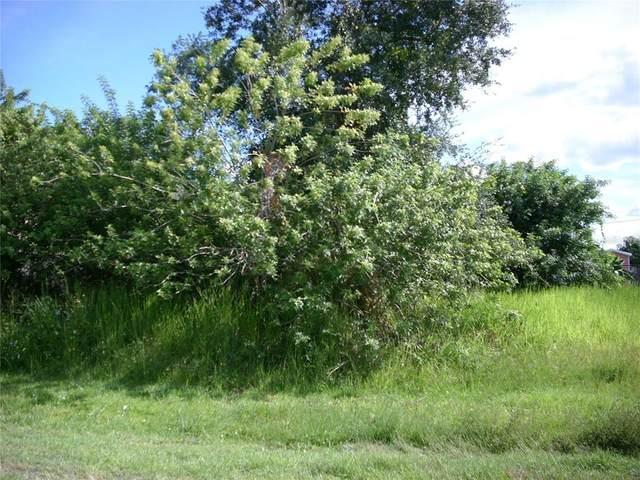 102 Coconut Grove Way, Kissimmee, FL 34758 (MLS #S5057297) :: Blue Chip International Realty