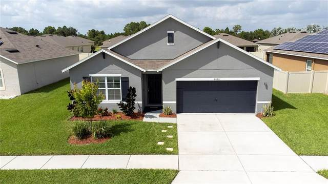 6030 Grey Heron Drive, Winter Haven, FL 33881 (MLS #S5057338) :: Team Turner