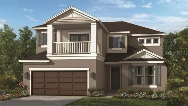 2700 Plume Road, Clermont, FL 34711 (MLS #S5057453) :: Keller Williams Suncoast