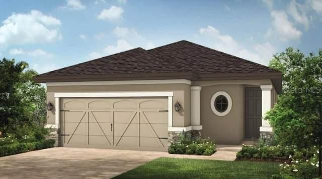 2720 Plume Road, Clermont, FL 34711 (MLS #S5057461) :: Keller Williams Suncoast