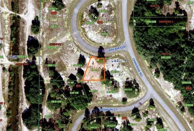 Bream Circle, Poinciana, FL 34759 (MLS #S5057549) :: Everlane Realty