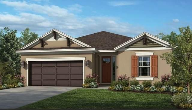 2704 Plume Road, Clermont, FL 34711 (MLS #S5057558) :: Keller Williams Suncoast