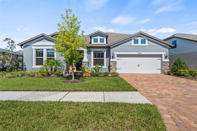 19284 Briarbrook Drive, Tampa, FL 33647 (MLS #S5057612) :: Cartwright Realty