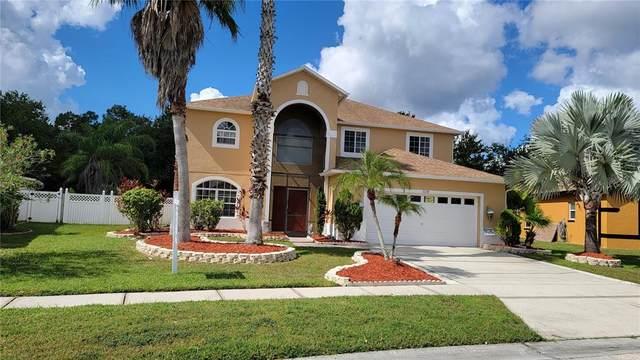 5314 Coral Vine Lane, Kissimmee, FL 34758 (MLS #S5057762) :: Everlane Realty