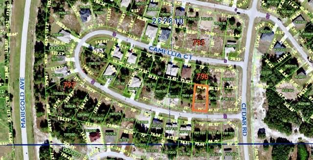 392 Camellia Court, Poinciana, FL 34759 (MLS #S5057932) :: SunCoast Home Experts
