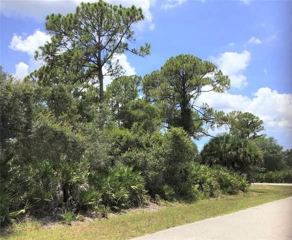 17043 Irving Avenue, Port Charlotte, FL 33948 (MLS #S5058020) :: Orlando Homes Finder Team