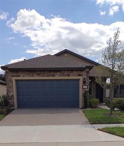 522 Vigo Street, Davenport, FL 33837 (MLS #S5058219) :: Vivian Gonzalez   Ocean Real Estate Group, LLC
