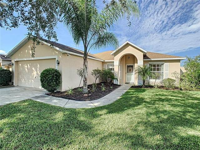 703 Sunridge Woods Boulevard, Davenport, FL 33837 (MLS #S5058231) :: Cartwright Realty