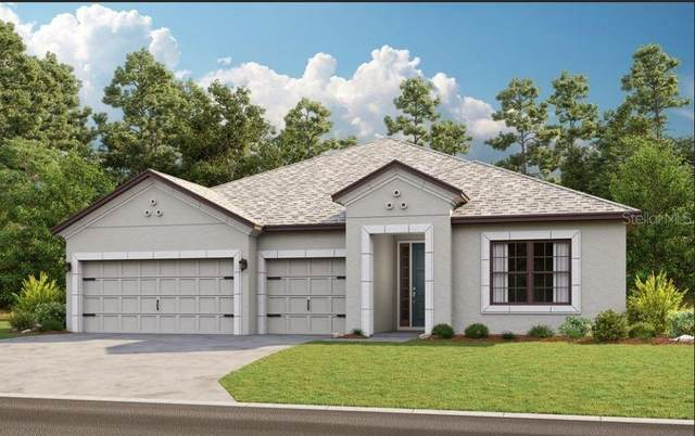 3879 Golden Knot Drive, Kissimmee, FL 34746 (MLS #S5058253) :: The Kardosh Team