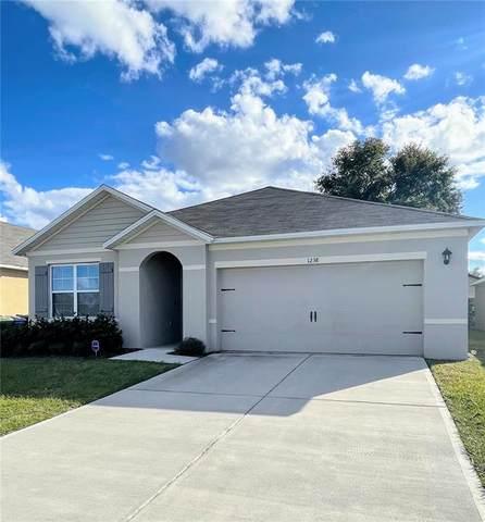 1238 Sophia Boulevard, Winter Haven, FL 33881 (MLS #S5058363) :: Keller Williams Realty Select