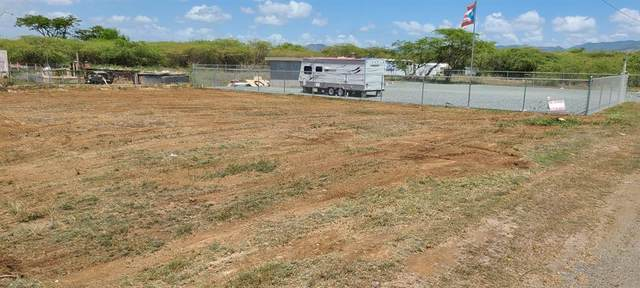 San Felipe Brisas Del Sur #6, SALINAS, PR 00751 (MLS #S5058386) :: Rabell Realty Group