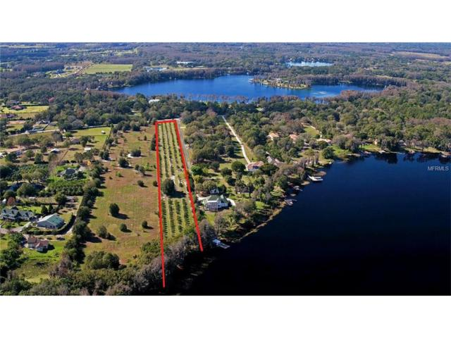 17823 Crawley Road, Odessa, FL 33556 (MLS #T2729542) :: Griffin Group