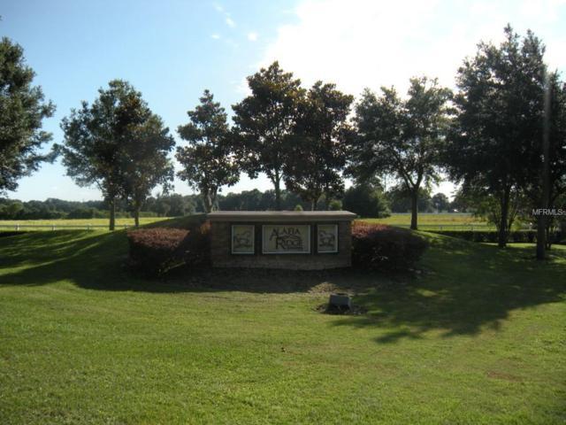 8609 Alafia Hills Drive, Plant City, FL 33567 (MLS #T2764276) :: The Light Team