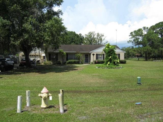 8112 Honeybee Lane, Tampa, FL 33635 (MLS #T2779500) :: Griffin Group