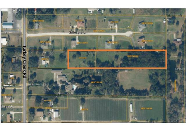 3902 & 3904 Turkey Creek Road, Plant City, FL 33567 (MLS #T2787332) :: Mark and Joni Coulter | Better Homes and Gardens