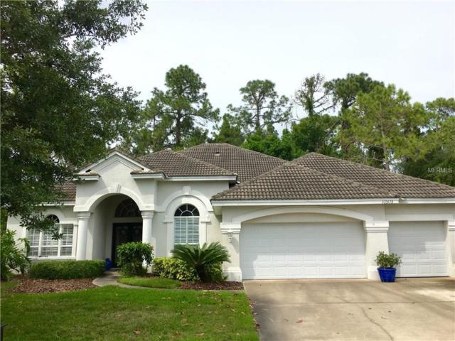 10509 Greensprings Drive, Tampa, FL 33626 (MLS #T2817401) :: The Duncan Duo & Associates