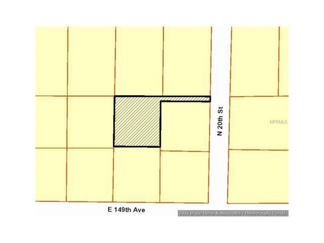 14908 N 20TH Street, Lutz, FL 33549 (MLS #T2823882) :: The Duncan Duo & Associates