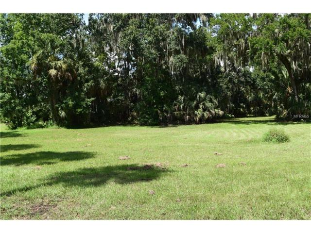 Winn Road, Riverview, FL 33569 (MLS #T2828957) :: The Duncan Duo & Associates