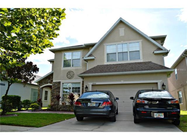 6900 Runner Oak Drive, Wesley Chapel, FL 33545 (MLS #T2833861) :: The Duncan Duo & Associates