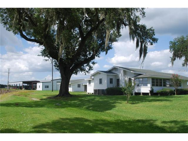 13146 Tom Gallagher Road, Dover, FL 33527 (MLS #T2834914) :: The Duncan Duo Team
