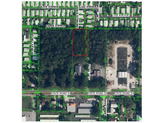 Flint Street, Zephyrhills, FL 33541 (MLS #T2838614) :: RE/MAX Realtec Group