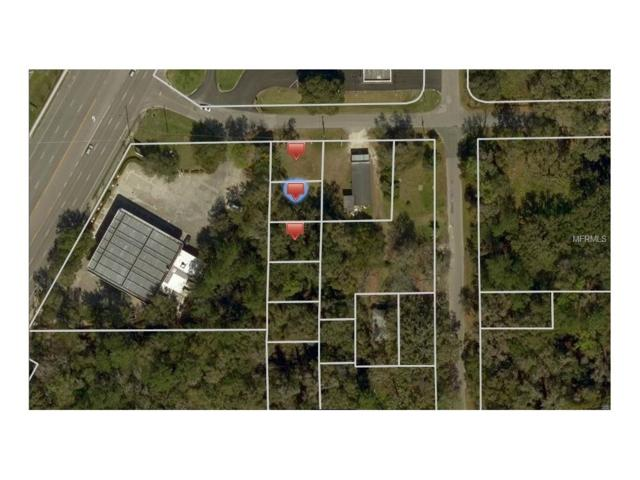 Daniel Avenue, Brooksville, FL 34601 (MLS #T2840202) :: The Duncan Duo Team