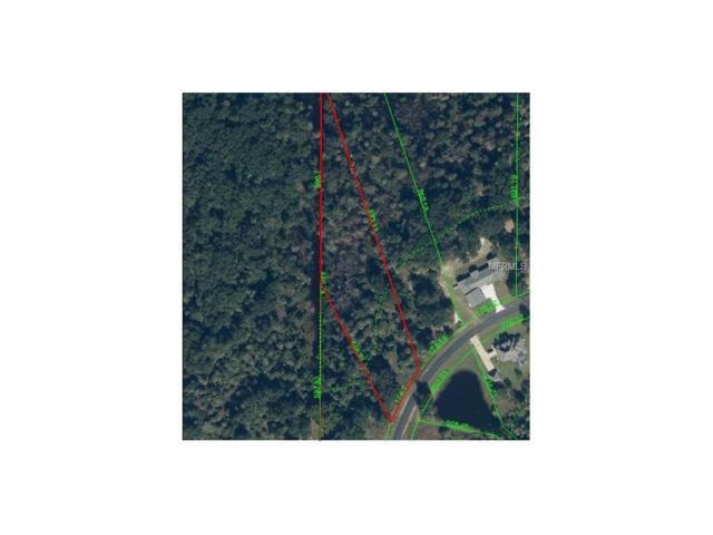 8407 Spring Forest Lane, Wesley Chapel, FL 33544 (MLS #T2843649) :: The Duncan Duo & Associates