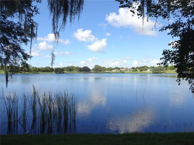 Lake Marie Boulevard, Dundee, FL 33838 (MLS #T2843874) :: Griffin Group