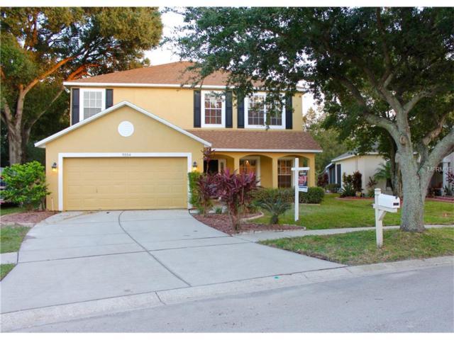 9354 Hidden Water Circle, Riverview, FL 33578 (MLS #T2847446) :: The Duncan Duo & Associates
