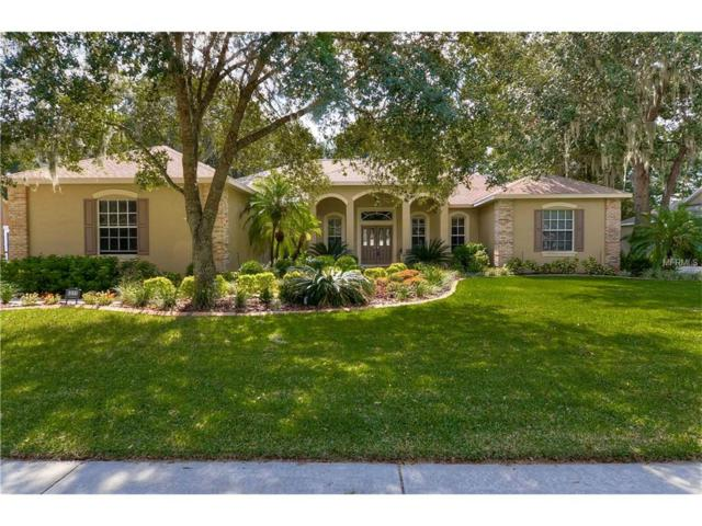 6311 Wild Orchid Drive, Lithia, FL 33547 (MLS #T2848464) :: Team Bohannon Keller Williams, Tampa Properties