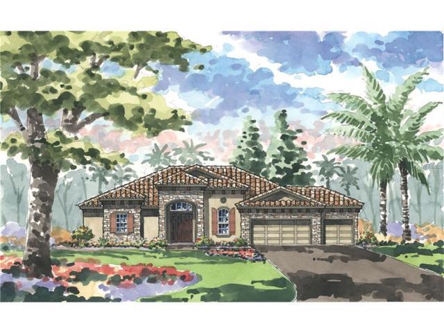 603 165TH Street E, Bradenton, FL 34212 (MLS #T2851135) :: The Duncan Duo & Associates