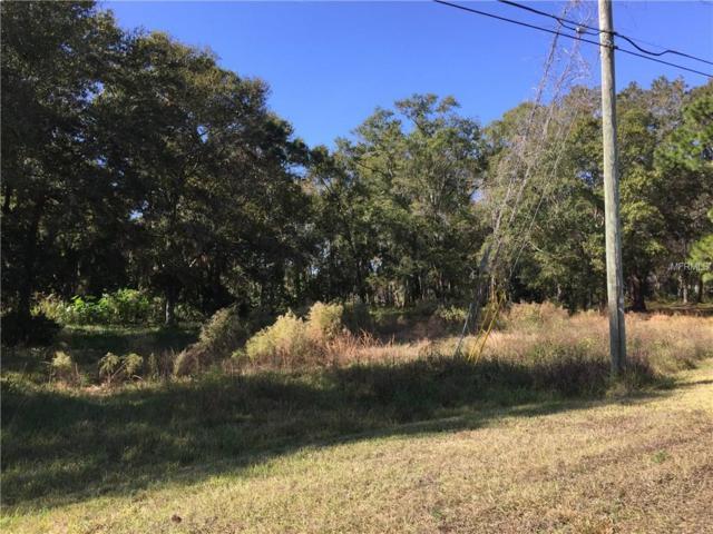 Rye Lane, Tampa, FL 33625 (MLS #T2853840) :: The Duncan Duo & Associates