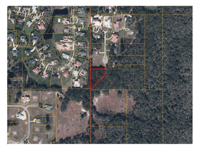 3315 Chase Jackson Branch, Lutz, FL 33559 (MLS #T2856874) :: The Duncan Duo & Associates
