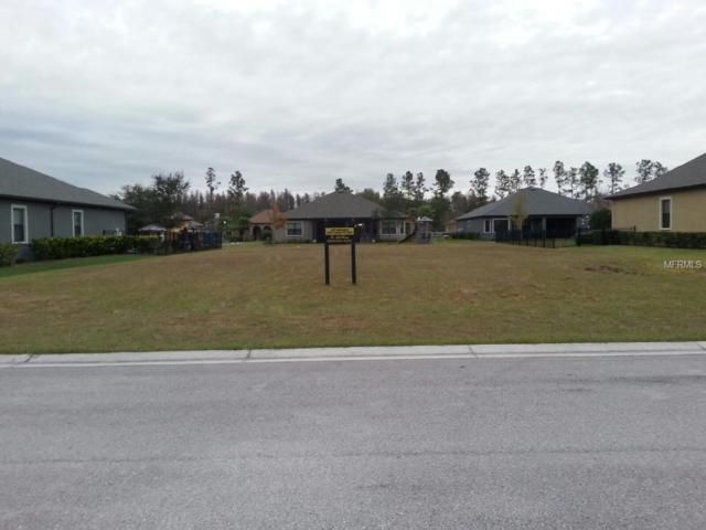 4913 Lago Vista Circle, Land O Lakes, FL 34639 (MLS #T2858002) :: Rabell Realty Group