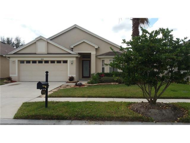 27434 Edenfield Drive, Wesley Chapel, FL 33544 (MLS #T2859699) :: The Duncan Duo & Associates