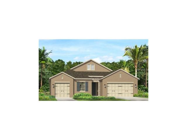 18113 Leafmore Street, Lutz, FL 33548 (MLS #T2860417) :: The Duncan Duo & Associates