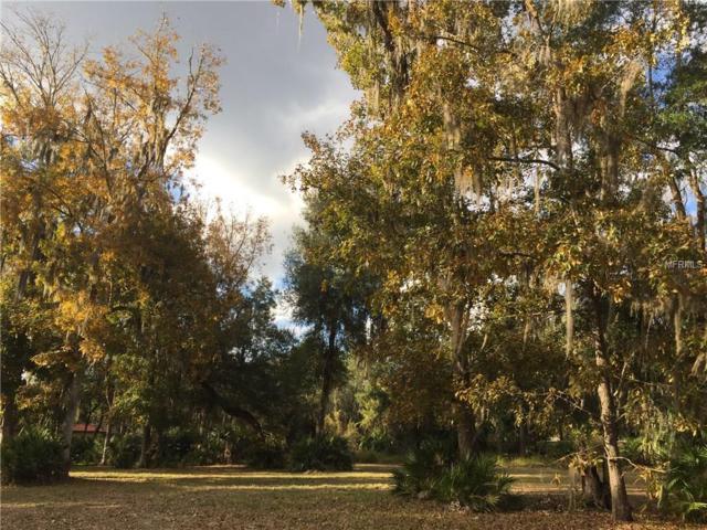 930 Shoals Landing Drive, Brandon, FL 33511 (MLS #T2862025) :: Griffin Group
