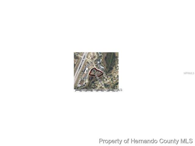 Caribbean Drive, Spring Hill, FL 34606 (MLS #T2862268) :: Griffin Group