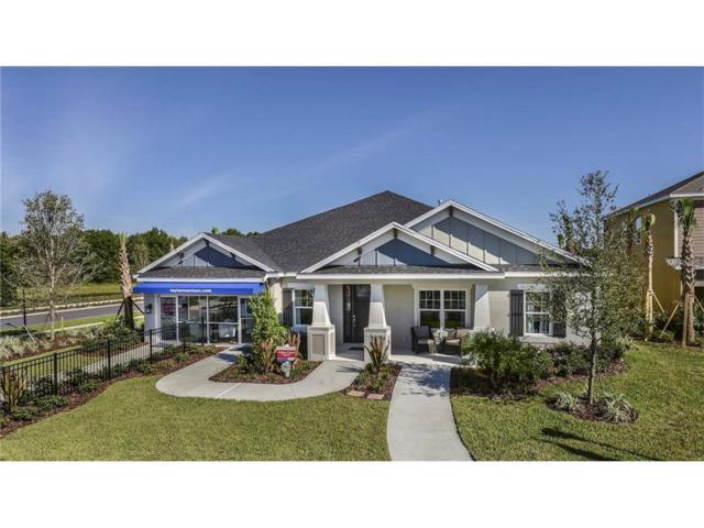 907 Heritage Groves Drive, Brandon, FL 33510 (MLS #T2862458) :: The Duncan Duo & Associates