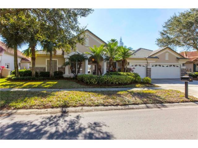 10518 Greensprings Drive, Tampa, FL 33626 (MLS #T2863897) :: The Duncan Duo & Associates