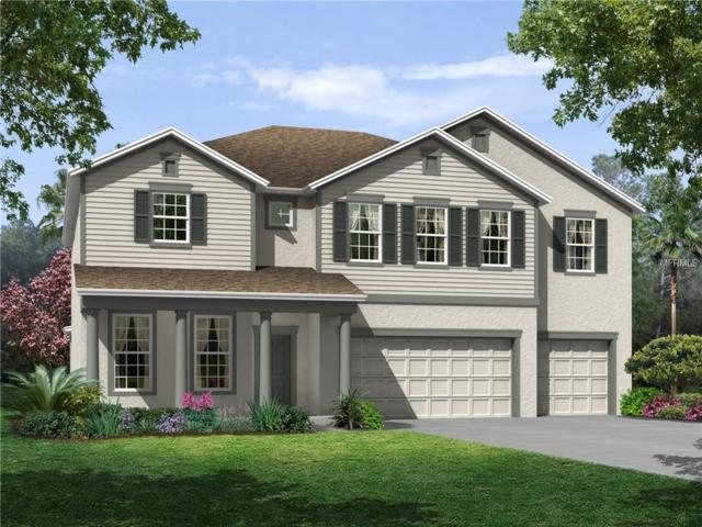 11605 Tetrafin #0840-65 Drive, Riverview, FL 33579 (MLS #T2863983) :: The Duncan Duo & Associates