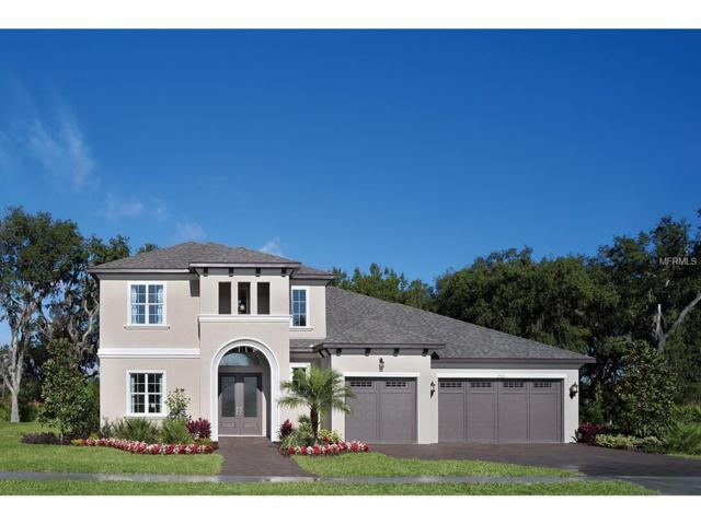 3316 Chase Jackson Branch, Lutz, FL 33559 (MLS #T2865156) :: The Duncan Duo & Associates
