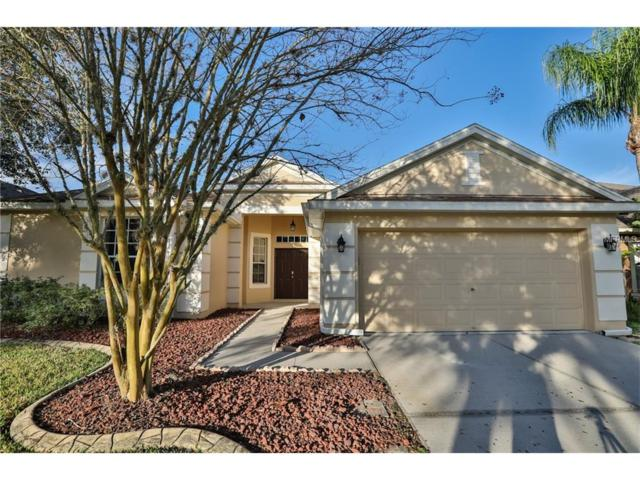 5837 Heronview Crescent Drive, Lithia, FL 33547 (MLS #T2867019) :: The Duncan Duo & Associates