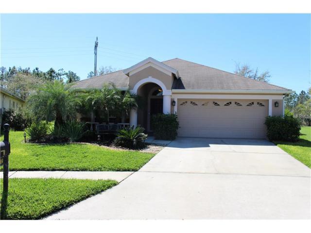 3004 Sunwatch Drive, Wesley Chapel, FL 33544 (MLS #T2867127) :: The Duncan Duo & Associates