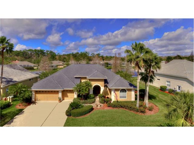 10559 Greencrest Drive, Tampa, FL 33626 (MLS #T2867499) :: The Duncan Duo & Associates