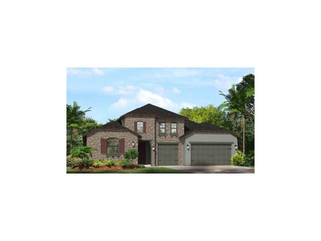 18026 Woodland View Drive, Lutz, FL 33548 (MLS #T2867670) :: The Duncan Duo & Associates