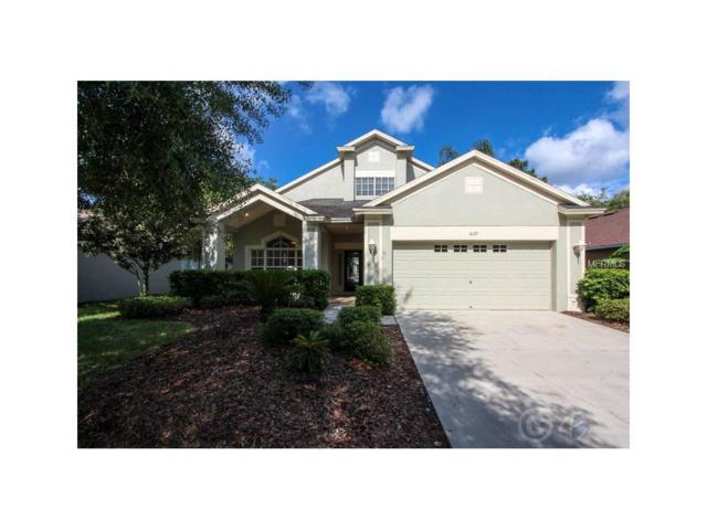 6125 Gannetdale Drive, Lithia, FL 33547 (MLS #T2867690) :: The Duncan Duo & Associates