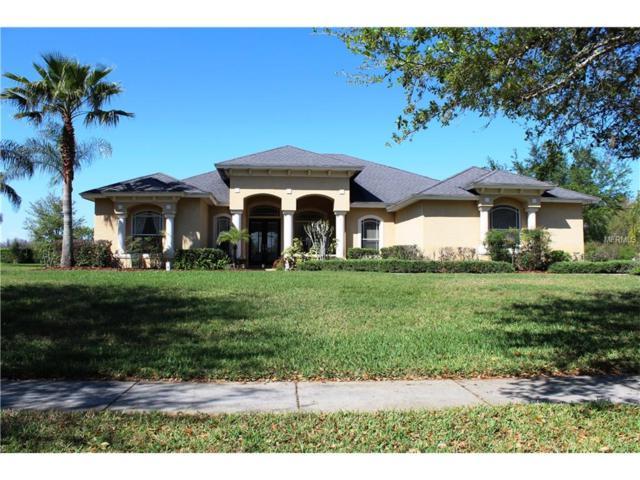 19618 Eagle Crest Drive, Lutz, FL 33549 (MLS #T2867697) :: The Duncan Duo & Associates