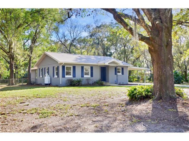 11121 Church Drive, Riverview, FL 33578 (MLS #T2867847) :: The Duncan Duo & Associates